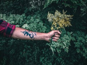 Tatuajes de Árboles en el Brazo