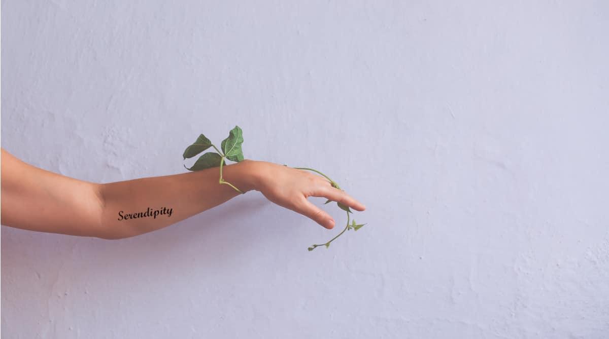 Serendipia Tatuaje
