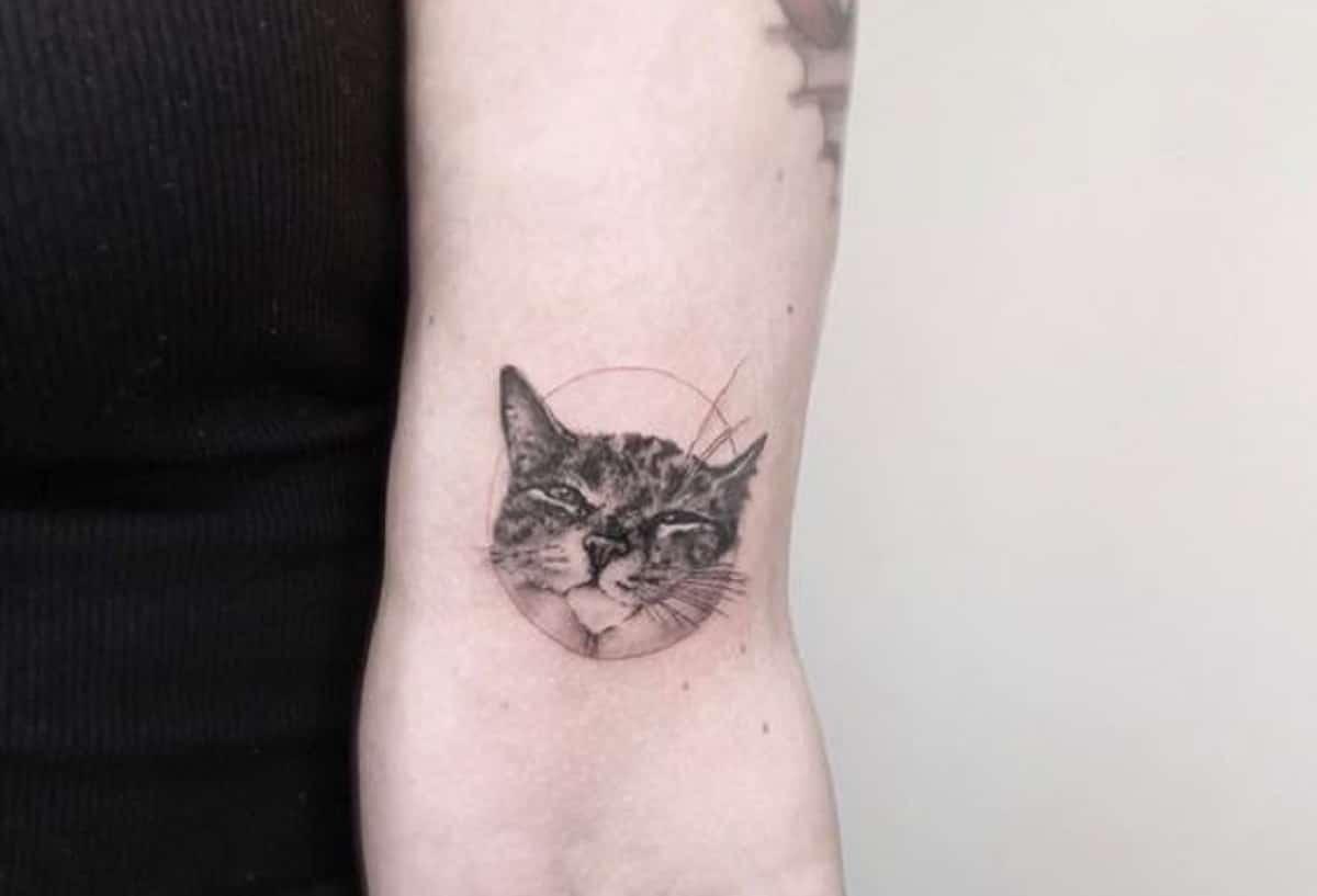 tatuaje gato realista