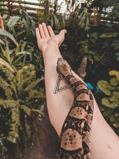Un triángulo en el brazo